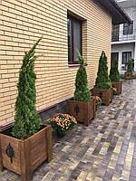 Ящик для растений 50х50,дерево (Ясень)