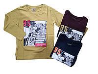 Регланы для мальчиков оптом, Glo-story, размеры 98-128, арт. BCX-6975, фото 1
