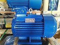Электродвигатель АИР132M6 7,5кВт 1000об./мин.