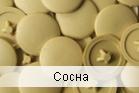 Заглушка на саморез сосна (упаковка 100/1000 шт.)
