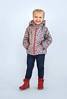 Куртка-жилет для девочки (яблочки) опт, фото 1