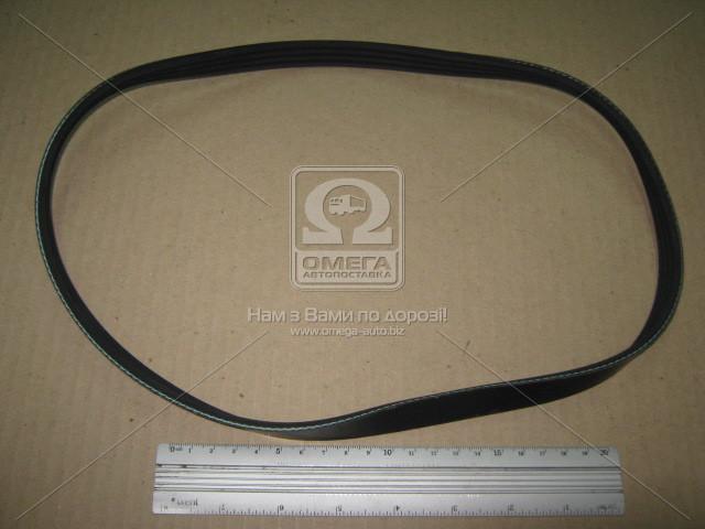 Ремень поликлиновый 4PK830 (производитель DONGIL) 4PK830
