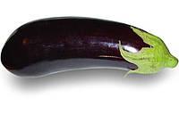 Насіння баклажана Клорінда F1, 1000 насіння, фото 1