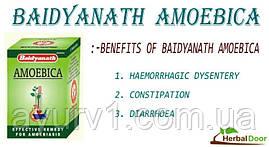 Amoebica, Амебика /  Baidyanath /100 таб