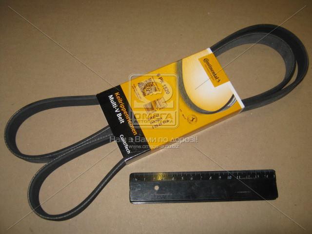 Ремень поликлиновой (Производство ContiTech) 6PK1520