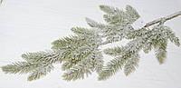 Ветка ели светло-зеленой в снегу большая, фото 1