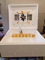Автоматический инкубатор для яиц Теплуша на 63 яйца с ТЭНом и цифровым терморегулятором
