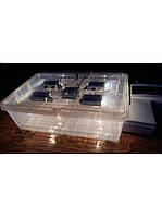 Инкубатор автоматический «Курочка Ряба ИБ-56» пластиковый корпус/вентилятор/регулятор влажности
