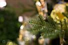 Ель Исскуственная SHERWOOD X-MAS TREE DELUXE  TIPS 2406 - GREEN 389098-EDL MICA H230XD142CM, фото 6