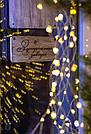 Гирлянда (звездопад) Luca Lighting HANGING BRANCH SILVER  768LED IP44 - WHITE 1034145-EDL L220CM, фото 5