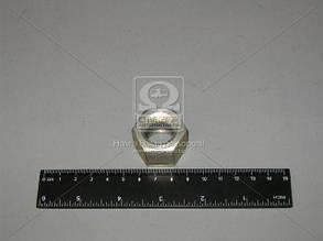 Гайка М20 стрем. рессор. ГАЗ 3308,33104 (пр-во ГАЗ) 4595551-375