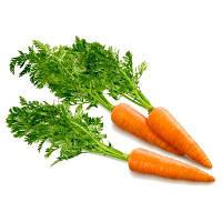 Семена моркови Вита Лонга, 50 грамм