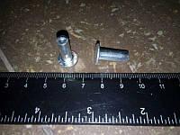 Заклепка алюминевая с плоской головкой 6*(12*15) (50шт. к-кт )