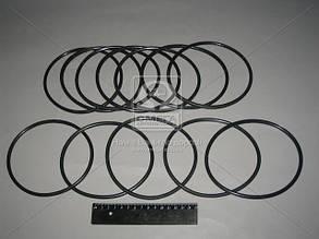 Кольцо уплотнительное на гильзу СМД 60 (производитель Украина) Р/К-2206
