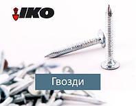 Цвях покрівельний кільцевий 3.1 x 30 К б/ц (уп 5 кг/1)