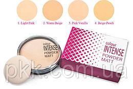 Пудра для лица COLOUR INTENSE компактная Powder Matt PM150 № 2 Warm Beige