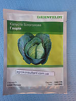 Семена капусты Глория F1 (Syngenta) 2500 семян — средне-поздняя, белокочанная.