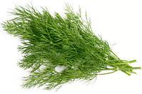 Семена укропа Дилл, 500 грамм