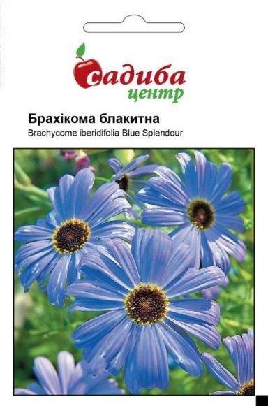 Семена брахикомы Голубая 0,1 г, Hем Zaden