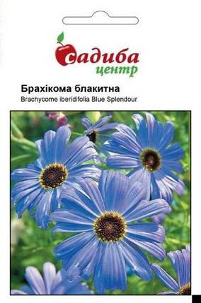 Семена брахикомы Голубая 0,1 г, Hем Zaden, фото 2