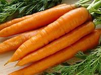 Морковь Королева осени кг