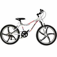 Велосипед детский Тitan 20″  Rocky Boy (All Wheel)