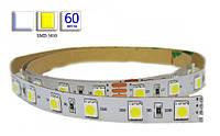 Светодиодная лента LED, SMD 5630, белый холодный, 60 шт/м, не влагозащищенная IP20