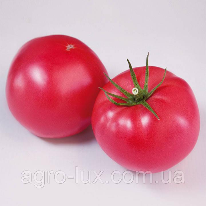 Розовый томат KS 1205, кс 1205  500 сем. Kitano Seeds /Китано Сидс