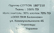 Одеяло ТЕП 180*210 Природа COTTON membrana print, фото 3