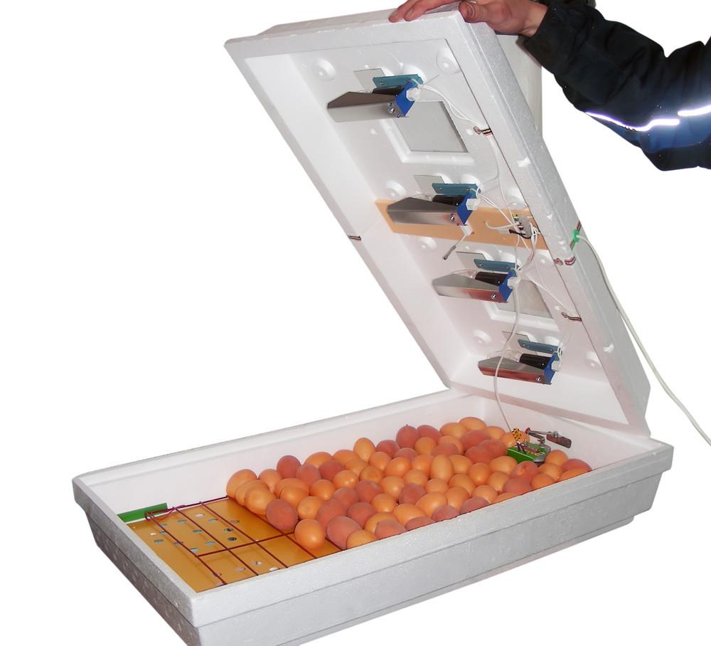 Інкубатор Рябушка-2 ІБ-130 автоматичний цифровий на 130 яєць