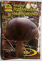 Мицелий Подберезовик  обыкновенный  10гр