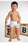Трусики (боксерки) детские - RelaxMaternity Baby 5912 Crabyon