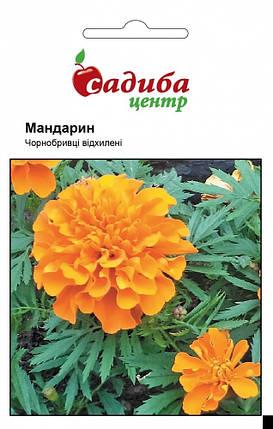 Семена бархатцев Мандарин 0,2 г, Hем Zaden, фото 2