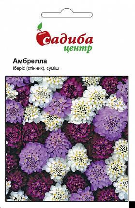 Семена ибериса Амбрелла смесь 0,5 г, Hем Zaden, фото 2