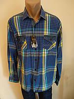 Рубашка мужская больших размеров плотная коттоновая высокого качества  SPORTSMAN af2d1d00af18b