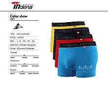 Мужские стрейчевые боксеры «INDENA»  АРТ.85017, фото 3