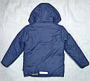 Куртка зимняя Snow Flight синяя (р. 116-158 см) (QuadriFoglio, Польша), фото 3