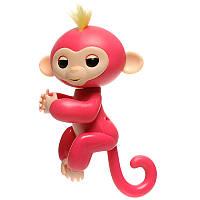 Pets Happy Monkey Pink
