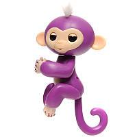 Pets Happy Monkey Violet