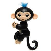 Pets Happy Monkey Black