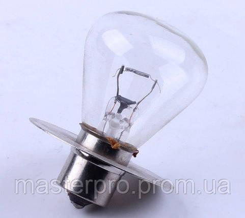 Лампа фары с юбкой (ZUBR original) - 180N-195N, фото 2