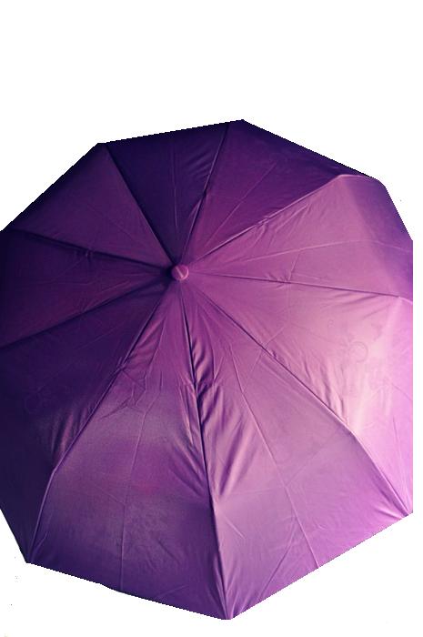 Зонт Сирень