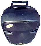 Колонка с аккумулятором Temeisheng A23 F, фото 2