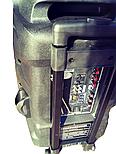 Колонка с аккумулятором Temeisheng A38 F, фото 7