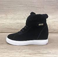 Черные замшевые женские кроссовки на танкетке угг UGG Women s Sneakers Black 3d80825bd48f8