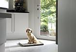 Туалет для собак Pad For Dog 872, фото 3