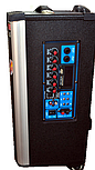 Колонка Temeisheng 1001 с аккумулятором, фото 3