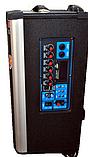 Колонка Temeisheng 1001 з акумулятором, фото 3