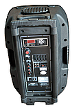 Temeisheng F18S с bluetooth 2 микрофона пульт аккумулятор, фото 2