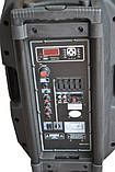 Temeisheng F18S с bluetooth 2 микрофона пульт аккумулятор, фото 3